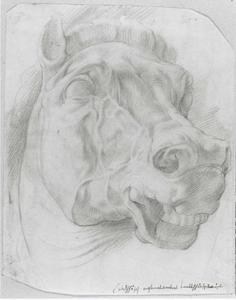 Studie van het hoofd van een paard