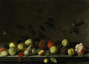 Stilleven met verschillende vruchten, schelpen en insekten op een tafel