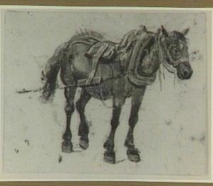Paard met juk