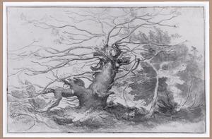 Landschap met kale geknotte boom