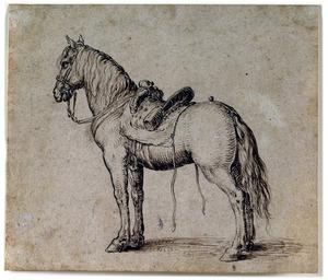 Gezadeld paard