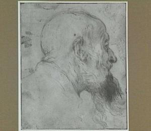 Studie voor een hoofd van de H. Hieronymus