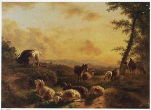 Landschap met rustend vee bij zonsondergang