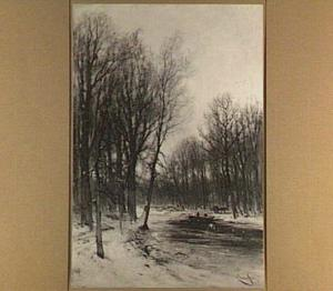 Gezicht op een besneeuwd bos in de namiddag