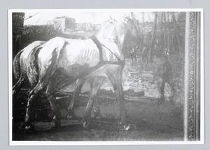 Twee witte werkpaarden