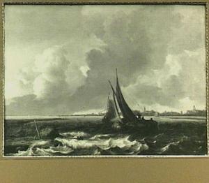 Gezicht op het Haarlemmermeer