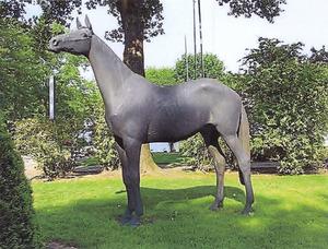 Halla, Olympisch kampioen springpaard