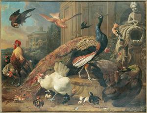 Pauwen, kippen, kuikens en andere vogels in een landschap