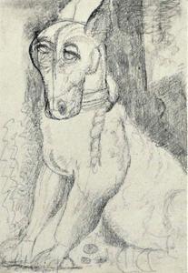 De hond