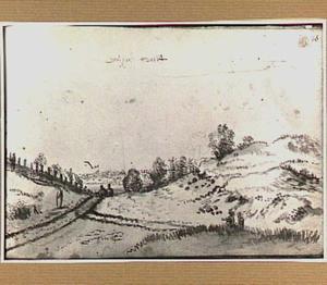 Duinlandschap met wandelaars en dorp in Noord-Holland