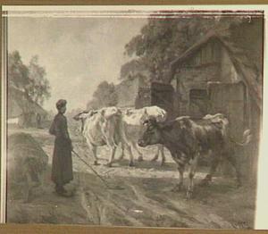 Koeien naar de weide