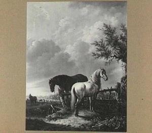 Paarden in de wei bij een hek