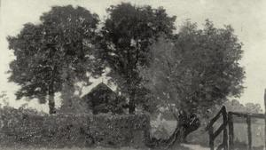 Boerderij bij Abcoude