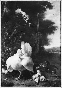 Een witte hen met haar kuikens in een boslandschap, op een tak een hop