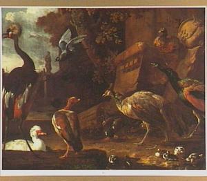 Twee pauwen, een kraanvogel, eenden en andere vogels in een parklandschap