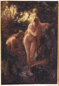 Baadsters in het bos