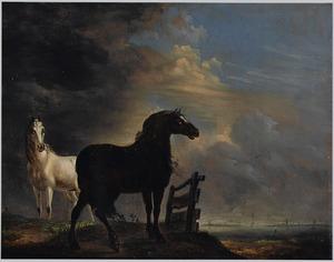 Twee paarden in de weide bij een hek, in de verte een plas