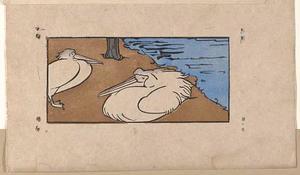 Twee pelikanen bij een vijver