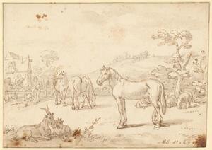 Paarden in een weiland