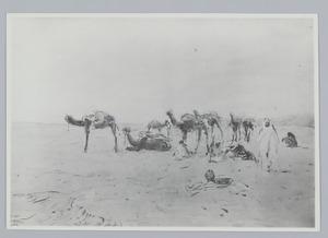 Rustende karavaan in de woestijn