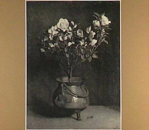 Een bloeiend azalea in een Spaanse pot