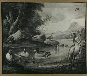 Eenden, een reiger en andere vogels in een rivierlandschap