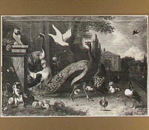 Vogels, een aapje en een eekhoorn in een formele tuin