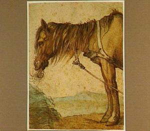 Hooi etend paard