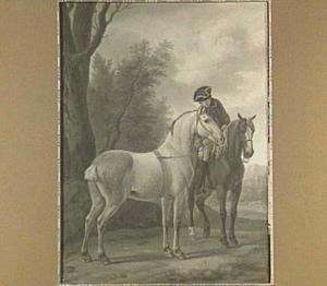 Normandisch paard
