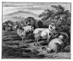 Schapen en geiten in een heuvellandschap