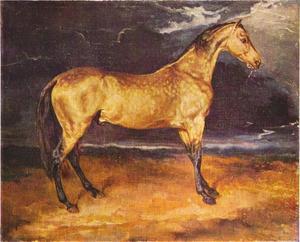 Een paard angstig geworden door de bliksem