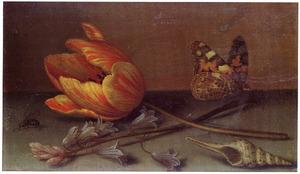 Tulp, hyacint, distelvlinder, schelp en vlieg op een stenen plint