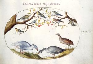 Zeven zangvogels in een kersenboom, daaronder twee ganzen en een patrijs