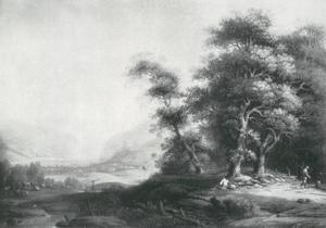 Boslandschap met een vergezicht op een weids dal