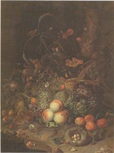 Fruit, bloemen, reptielen en insecten aan de rand van een bos