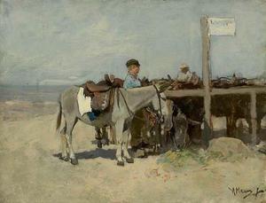 Ezelstandplaats op het strand van Scheveningen