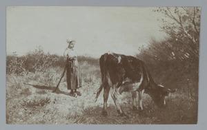 Jonge koehoedster