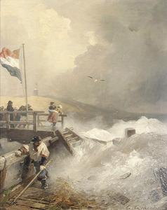Wilde zee aan de Nederlandse kust