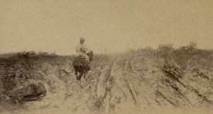 Man op een paard in een landschap
