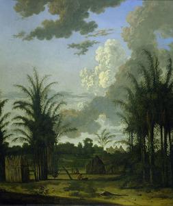 Plantage in Suriname