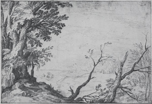 Groep bomen en uitzicht op een vallei