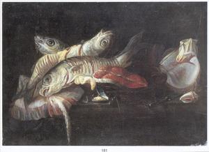 Stilleven van vissen en een moot zalm met een mossel, een schelp en een mes op een marmeren plint
