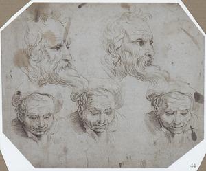 Vijf studies van koppen