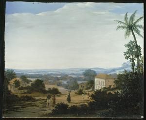 Braziliaans landschap met plantagehuis