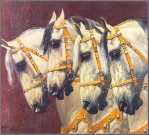 Vier circuspaarden