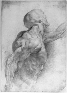 Anatomische studie van een naakte man