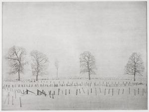 Sneeuwlandschap met rij hekjes op voorgrond