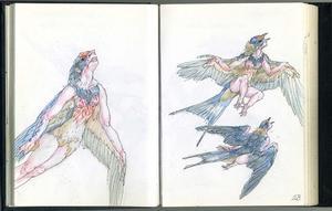 Metamorfose van Procne tot zwaluw