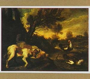 Twee honden jagen op eenden