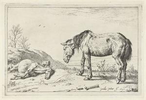 Afgeleefd paard